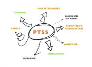 behandeling complexe ptss